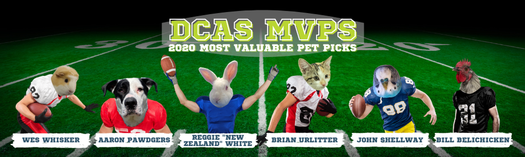 Picture reads DCAS MVPs 2020 most valuable pet picks and depicts a guinea pig head on a human football player's body running and cradling a football in his right arm and blocking with his left arm named Wes Whisker, a black and white dog head with floppy ears on a human football player's body crouched in an aggressive stance named Aaron Pawdgers, a white rabbit head on a human football player's body whose arms are raised in the air and has a football in his right hand named Reggie